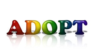 gay adoption